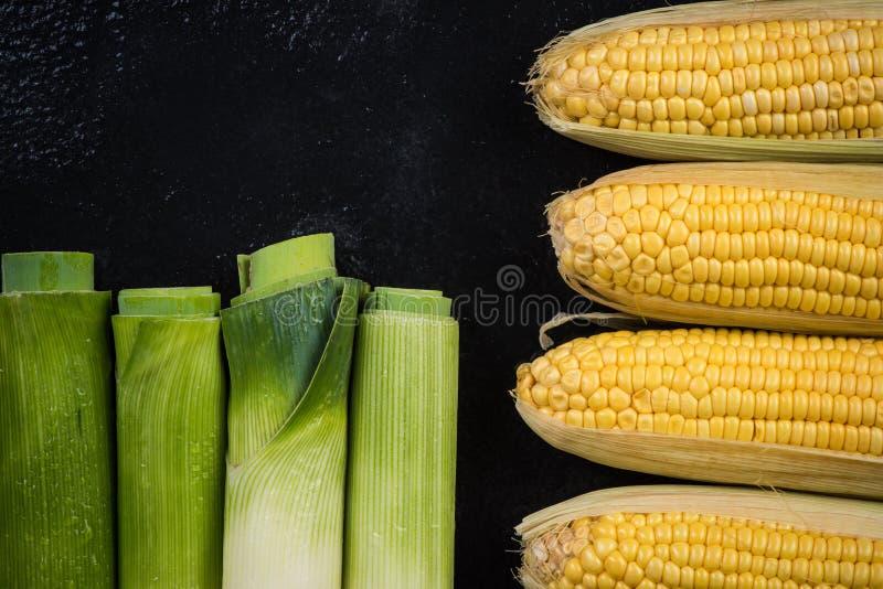 Ο σπάδικας πράσων και καλαμποκιού, φυτικό επίπεδο βρέθηκε στοκ φωτογραφία με δικαίωμα ελεύθερης χρήσης