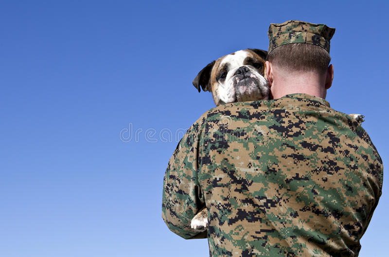 Ο στρατιωτικός αγκαλιάζει το σκυλί στοκ εικόνες με δικαίωμα ελεύθερης χρήσης