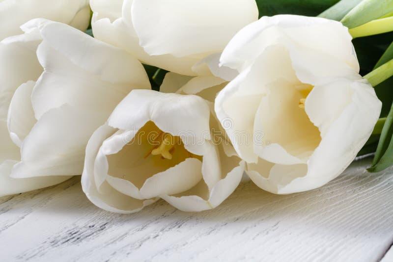 Ο σωρός του άσπρου ελατηρίου ανθίζει τις τουλίπες στοκ εικόνες με δικαίωμα ελεύθερης χρήσης
