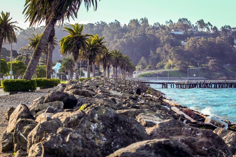Ο τοίχος διακοπτών πετρών στο Νησί των Θησαυρών στον κόλπο του Σαν Φρανσίσκο στοκ εικόνες με δικαίωμα ελεύθερης χρήσης