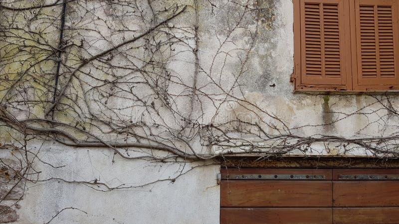 Ο τοίχος του εγκαταλειμμένου σπιτιού με τα κλειστές παράθυρα και τις πύλες wa στοκ εικόνες