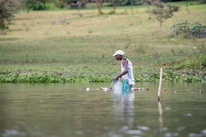 Ο τοπικός ψαράς πετά τα δίχτυα του στα ρηχά νερά της λίμνης Naivasha στοκ φωτογραφία με δικαίωμα ελεύθερης χρήσης