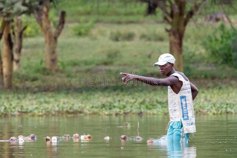 Ο τοπικός ψαράς πετά τα δίχτυα του στα ρηχά νερά της λίμνης Naivasha στοκ φωτογραφίες