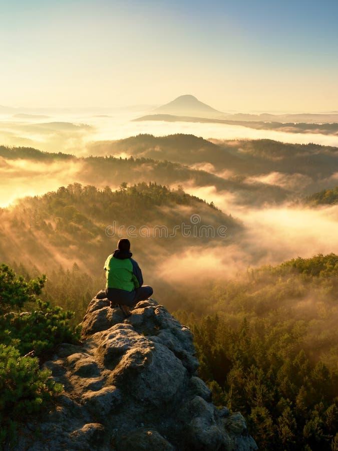 Ο τουρίστας ατόμων κάθεται στον εκτεθειμένο βράχο Σημείο άποψης με την ερείκη και τους κλάδους στοκ εικόνες με δικαίωμα ελεύθερης χρήσης