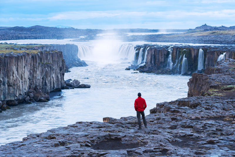Ο τουρίστας σε ένα κόκκινο σακάκι εξετάζει τον καταρράκτη Selfoss στοκ εικόνα
