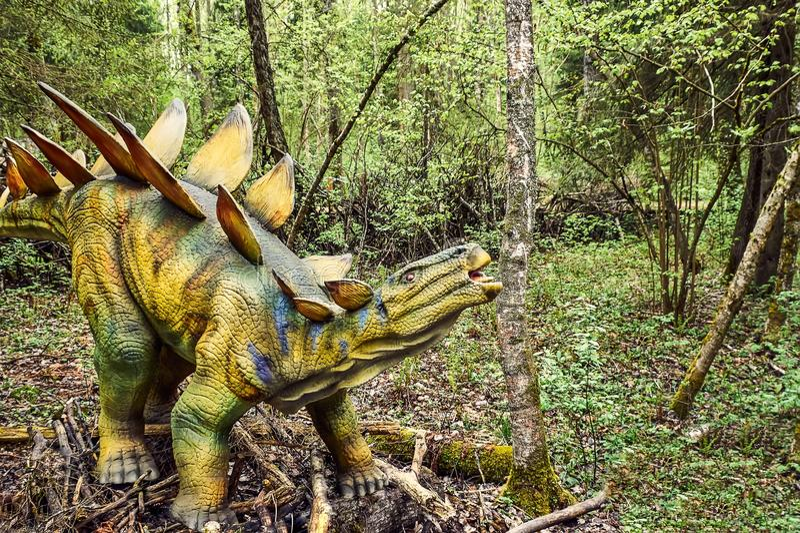 ο τρισδιάστατος δεινόσαυρος ψαλιδίσματος πέρα από το μονοπάτι δίνει το λευκό stegosaurus σκιών στοκ φωτογραφίες