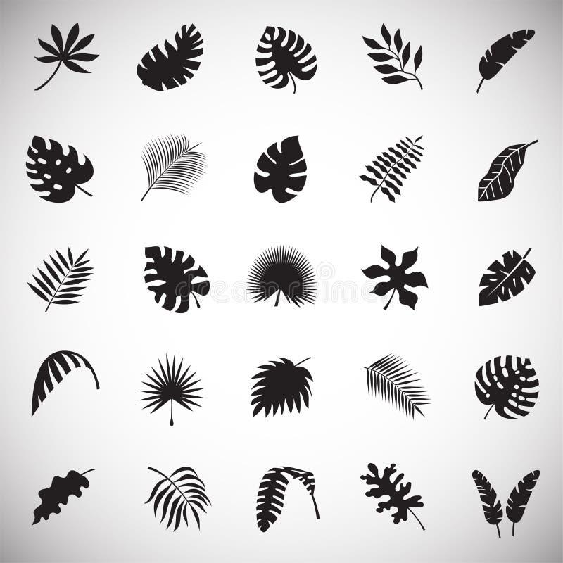 Ο τροπικός κύκλος βγάζει φύλλα τα εικονίδια που τίθενται στο άσπρο υπόβαθρο για το γραφικό και σχέδιο Ιστού, σύγχρονο απλό διανυσ απεικόνιση αποθεμάτων