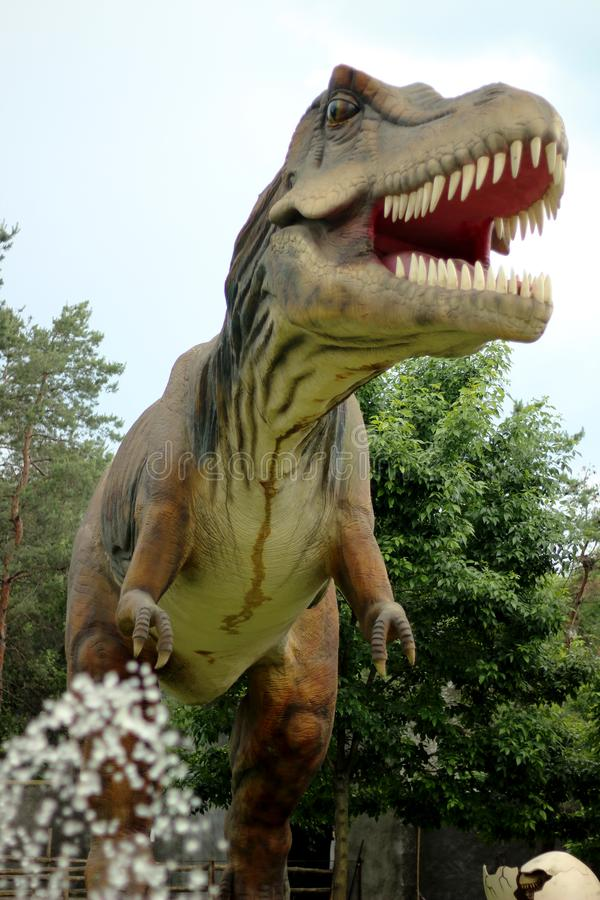 Ο τυραννόσαυρος Rex είναι ο μεγαλύτερος αρπακτικός δεινόσαυρος στοκ φωτογραφίες με δικαίωμα ελεύθερης χρήσης