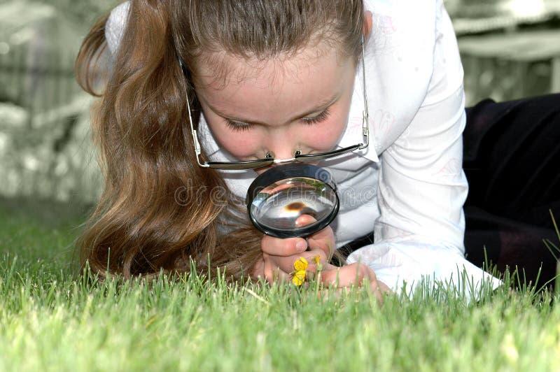 ο φακός κοριτσιών κοιτάζει Στοκ εικόνα με δικαίωμα ελεύθερης χρήσης