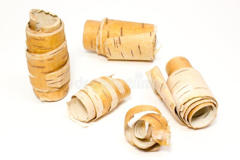 Ο φλοιός της σημύδας στοκ εικόνα με δικαίωμα ελεύθερης χρήσης