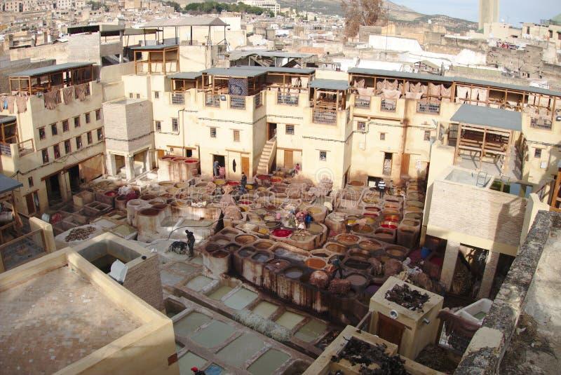 Ο φλοιός του Fez στοκ φωτογραφία