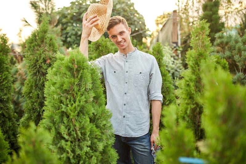 Ο χαμογελώντας κηπουρός τύπων σε ένα καπέλο αχύρου στέκεται στο σταθμός-κήπο με πολλά thujas μια θερμή ηλιόλουστη ημέρα στοκ εικόνα με δικαίωμα ελεύθερης χρήσης