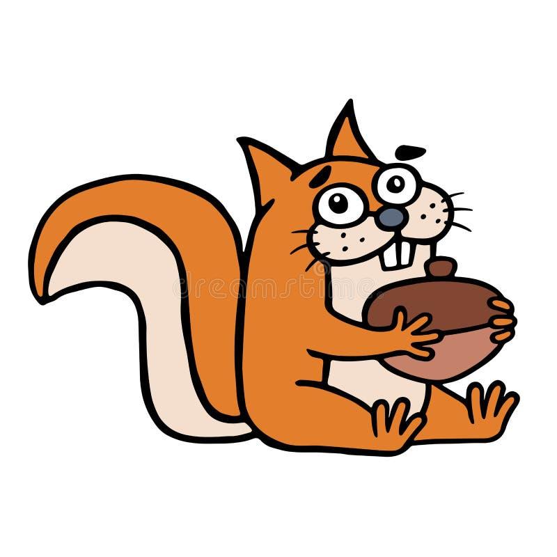 Ο χαριτωμένος σκίουρος βρήκε ένα μεγάλο καρύδι και τα χαμόγελα ευτυχώς επίσης corel σύρετε το διάνυσμα απεικόνισης ελεύθερη απεικόνιση δικαιώματος