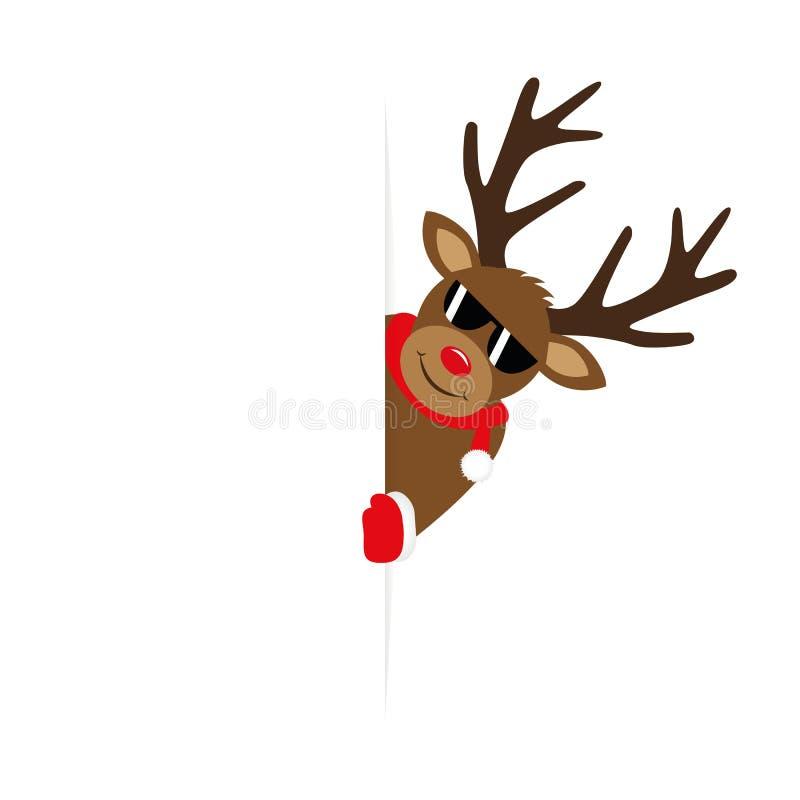 Ο χαριτωμένος τάρανδος με τα γυαλιά ηλίου κοιτάζει γύρω στα Χριστούγεννα γωνιών ελεύθερη απεικόνιση δικαιώματος