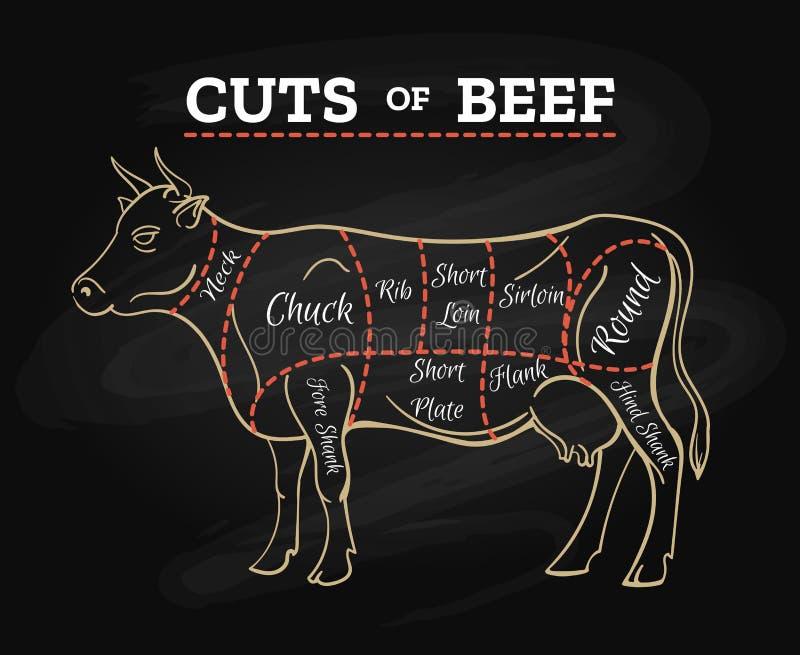 Ο χασάπης αγελάδων έκοψε το σχέδιο πινάκων κιμωλίας βόειου κρέατος απεικόνιση αποθεμάτων