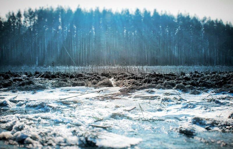 Ο χειμερινός ποταμός 2 στοκ εικόνα με δικαίωμα ελεύθερης χρήσης