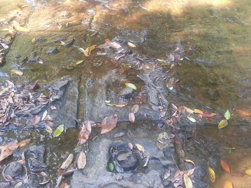 Ο χιασμός εμφανίζεται επίσης αλλού στα σχέδια της περιόδου Angkorian, όπως στις γλυπτικές κοιτών ποταμού Kbal Spean στοκ φωτογραφία με δικαίωμα ελεύθερης χρήσης