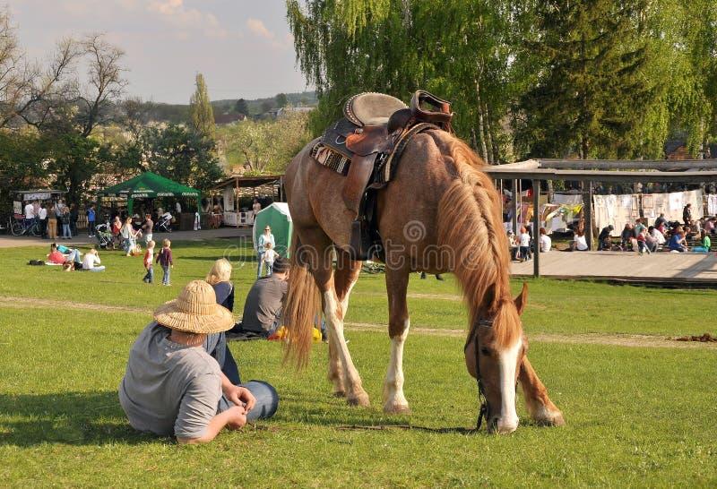 Ο χωρικός στηρίζεται, το άλογο βόσκει στοκ φωτογραφία με δικαίωμα ελεύθερης χρήσης