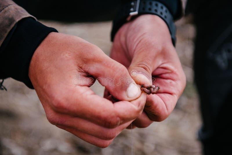 Ο ψαράς βάζει ένα σκουλήκι στο γάντζο στοκ φωτογραφίες με δικαίωμα ελεύθερης χρήσης