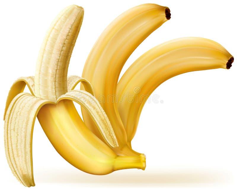 Ολόκληρες και ξεφλουδισμένες μπανάνες διανυσματική απεικόνιση