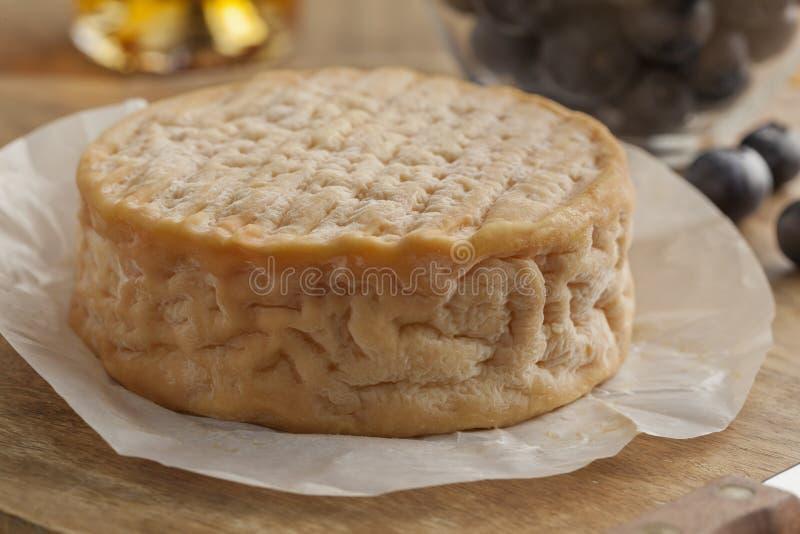 Ολόκληρος στενός επάνω τυριών Epoisses στοκ εικόνες