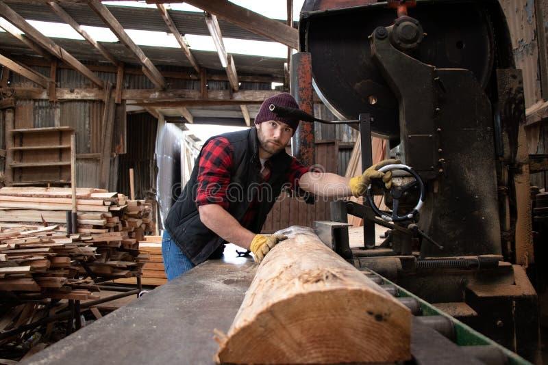 Ο όμορφος αρσενικός υλοτόμος αλέθει το ξύλο με το πριόνι ζωνών στοκ εικόνες με δικαίωμα ελεύθερης χρήσης