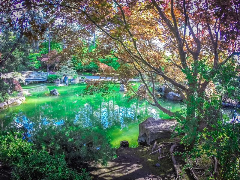 Ο όμορφος ιαπωνικός κήπος στο πάρκο Manito στο Spokane, πλύσιμο στοκ φωτογραφία