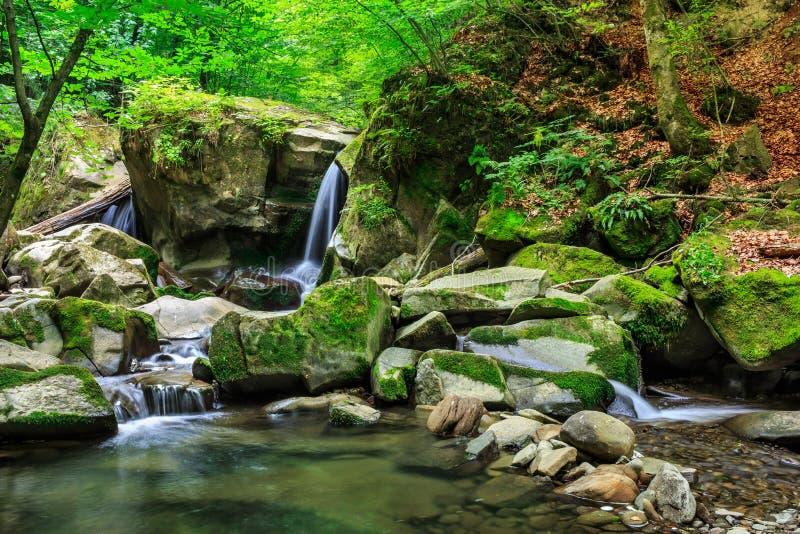 Ο όμορφος καταρράκτης βγαίνει από έναν τεράστιο βράχο στο δάσος στοκ φωτογραφία με δικαίωμα ελεύθερης χρήσης