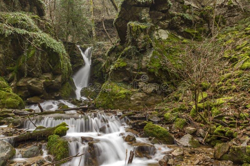Ο όμορφος καταρράκτης Leshnishki στο βαθύ δάσος, βουνό Belasitsa στοκ εικόνα