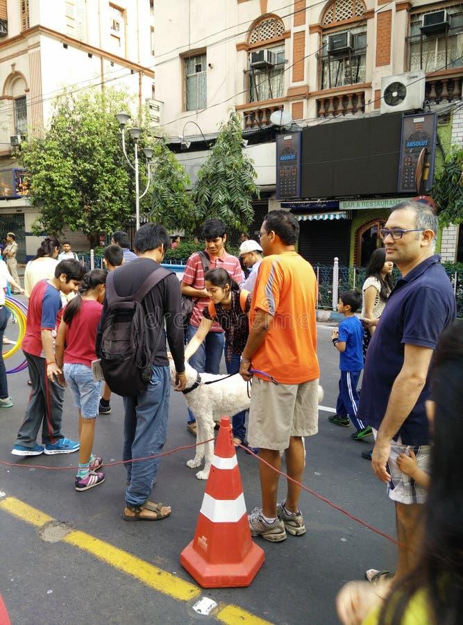 Οδός καρναβάλι στοκ φωτογραφία με δικαίωμα ελεύθερης χρήσης