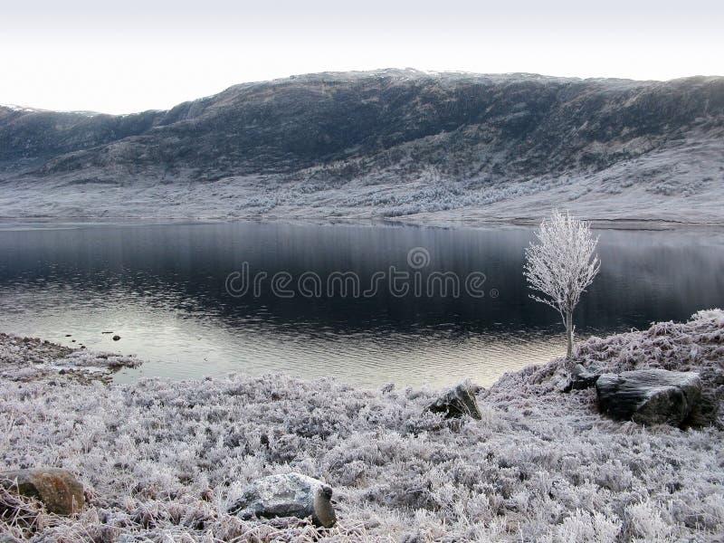 ο Garry ο χειμώνας της Σκωτίας στοκ φωτογραφίες