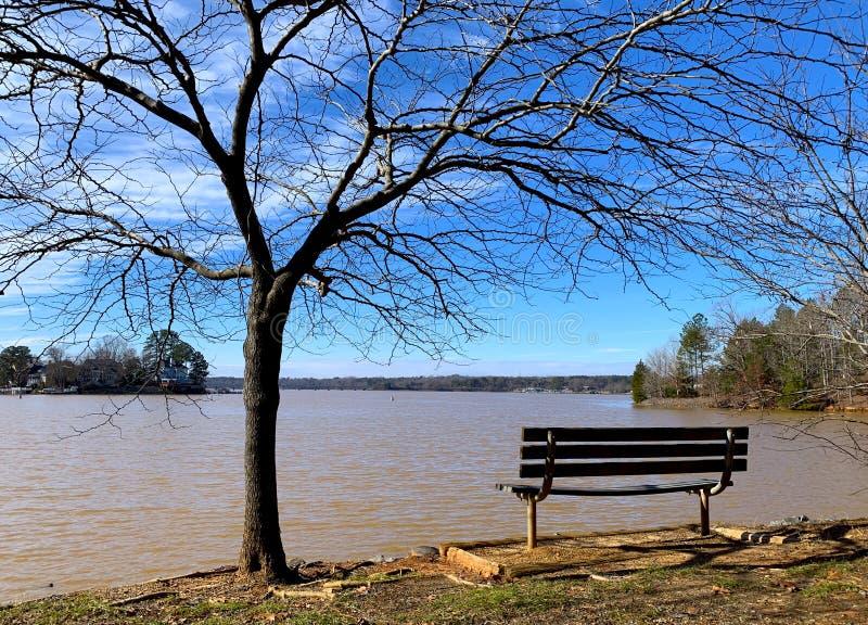 Πάγκος από το δέντρο στην ακτή λιμνών στοκ εικόνες