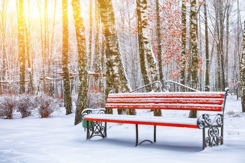 Πάγκος και δέντρα πάρκων που καλύπτονται από τη ισχυρή χιονόπτωση στοκ φωτογραφίες