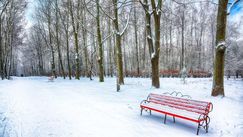 Πάγκος και δέντρα πάρκων που καλύπτονται από τη ισχυρή χιονόπτωση στοκ φωτογραφία με δικαίωμα ελεύθερης χρήσης