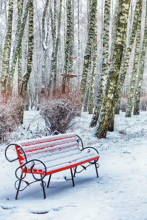 Πάγκος και δέντρα πάρκων που καλύπτονται από τη ισχυρή χιονόπτωση στοκ εικόνες με δικαίωμα ελεύθερης χρήσης