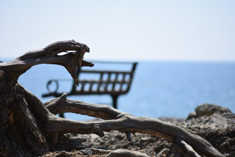 Πάγκος και θάλασσα στοκ εικόνες