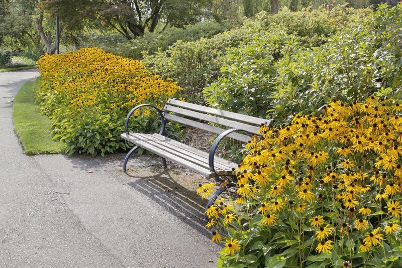 Πάγκος πάρκων με τα μαύρος-Eyed λουλούδια της Susan στοκ φωτογραφία
