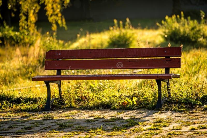Πάγκος πάρκων στο φθινοπωρινό ήλιο στοκ εικόνες