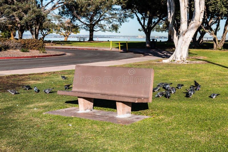 Πάγκος πάρκων τσιμέντου Vista Chula στο πάρκο Bayfront στοκ φωτογραφία με δικαίωμα ελεύθερης χρήσης