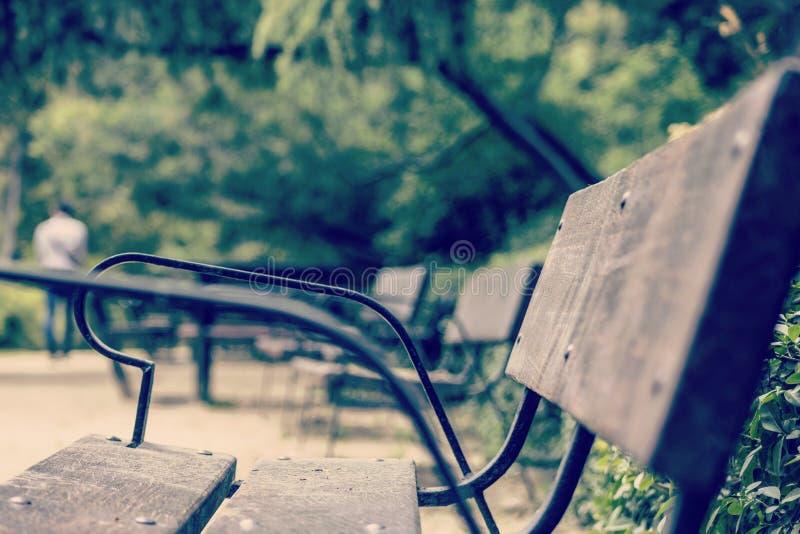 Πάγκος σε ένα πάρκο στοκ εικόνα