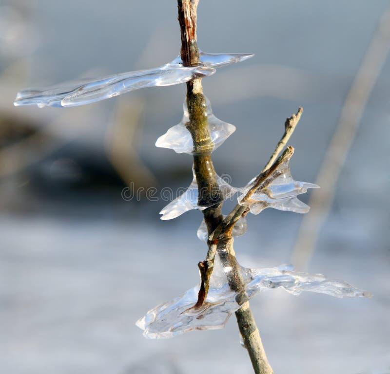 πάγος αριθμών στοκ φωτογραφία με δικαίωμα ελεύθερης χρήσης