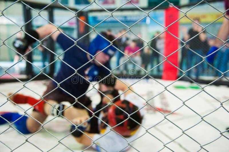 Πάλη μαχητών μπόξερ MMA στις πάλες χωρίς κανόνες στοκ εικόνα με δικαίωμα ελεύθερης χρήσης