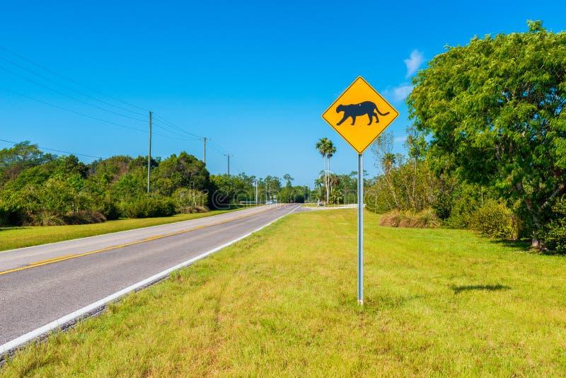 Πάνθηρας που διασχίζει το σημάδι στη νότια Φλώριδα ΗΠΑ στοκ εικόνες με δικαίωμα ελεύθερης χρήσης