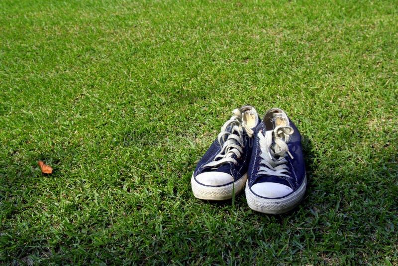 πάνινα παπούτσια χλόης στοκ εικόνες