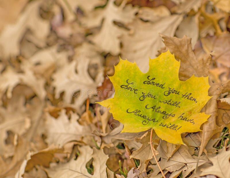 Πάντα σας αγαπήστε ποίημα στοκ φωτογραφίες