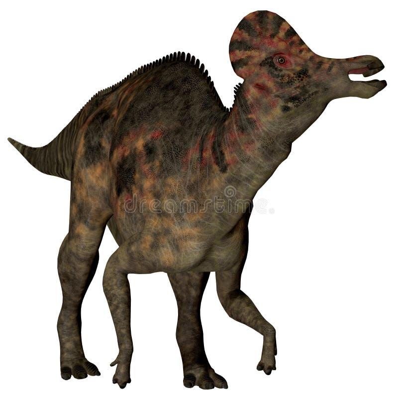 Πάπια-τιμολογημένος Corythosaurus δεινόσαυρος διανυσματική απεικόνιση