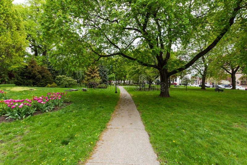 Πάρκο ακαδημίας δίπλα στο κτήριο Capitol στο Άλμπανυ, Νέα Υόρκη στοκ φωτογραφίες