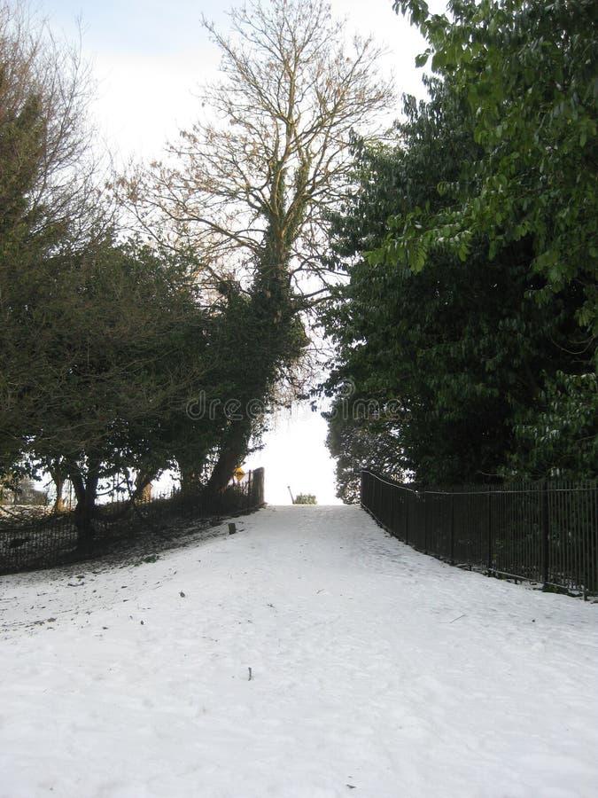Πάρκο Δουβλίνο, Ιρλανδία του Phoenix στο χιόνι στοκ εικόνα με δικαίωμα ελεύθερης χρήσης