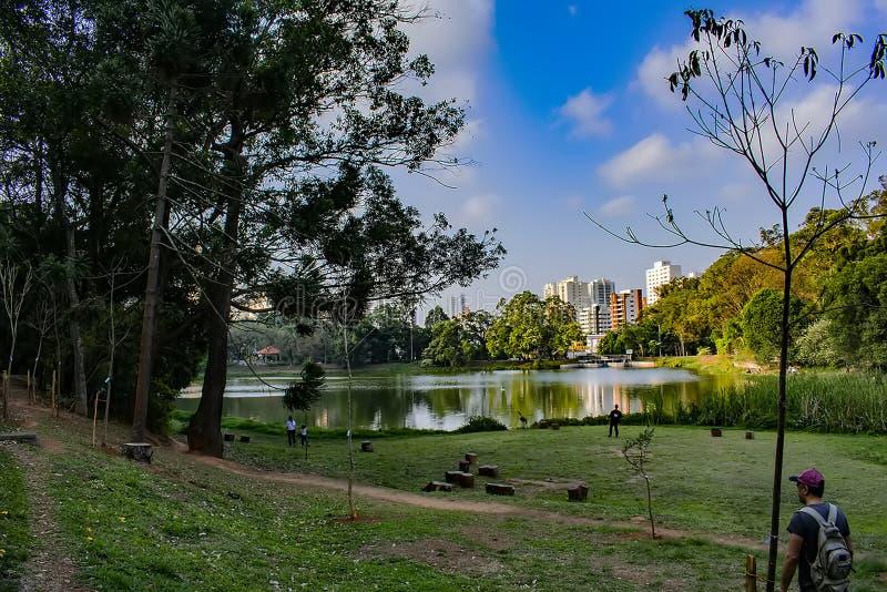 Πάρκο εγκλιματισμού στον πίθηκο του Σάο Πάολο Βραζιλία landsc στο μπλε ουρανό μέσα αργά στοκ φωτογραφίες με δικαίωμα ελεύθερης χρήσης