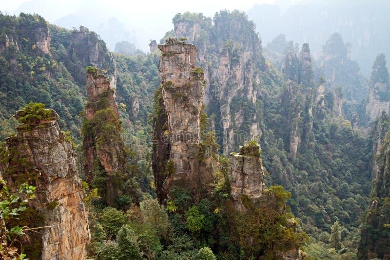 Πάρκο εθνικών δρυμός Zhangjiajie στοκ φωτογραφία με δικαίωμα ελεύθερης χρήσης